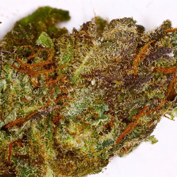 acdc cannabis
