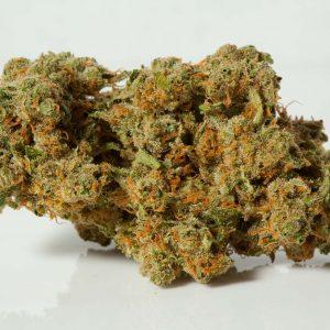 Durban Poison cannabis